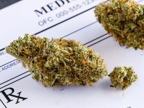 マリファナと健康に関する11の発見 —— 科学的に検証