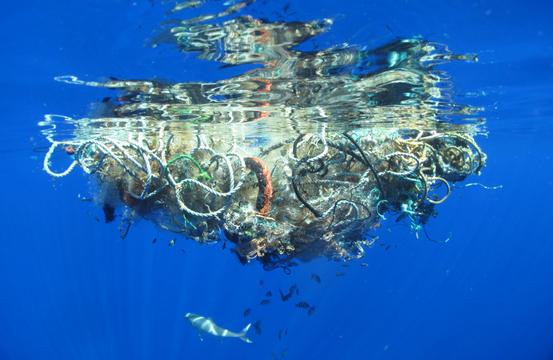 2050年の海は魚でなく、プラスチックで溢れかえる