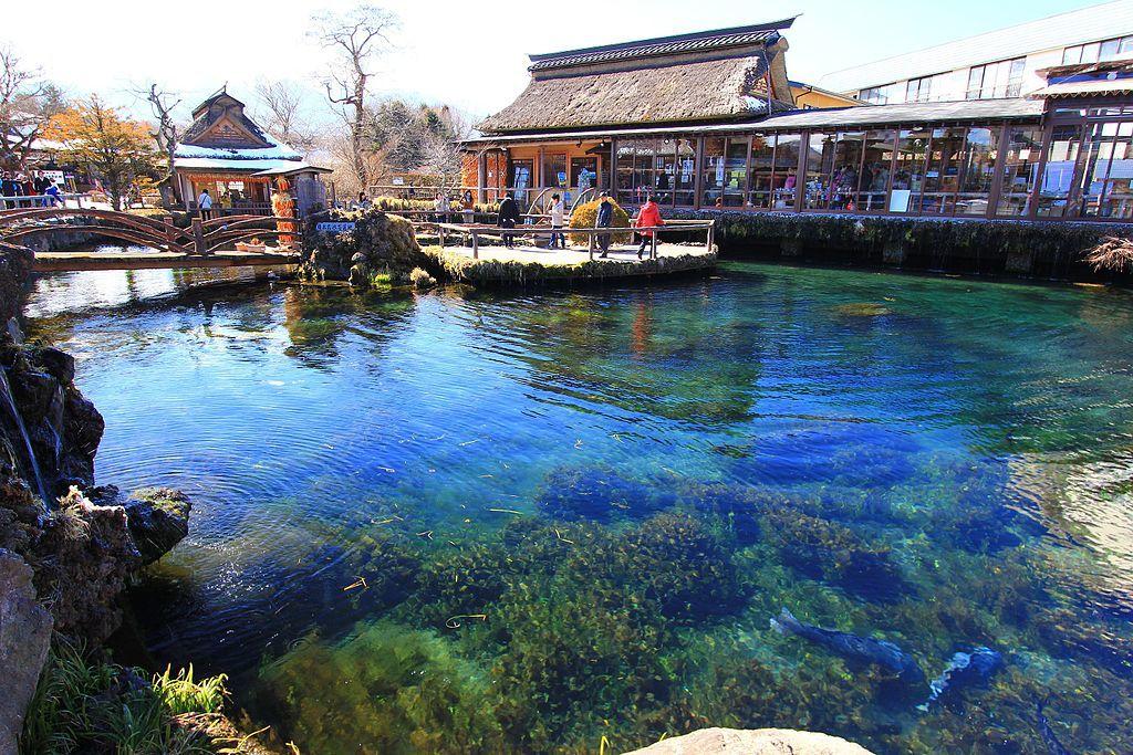 Naka_Pond,_Oshino,_Yamanashi