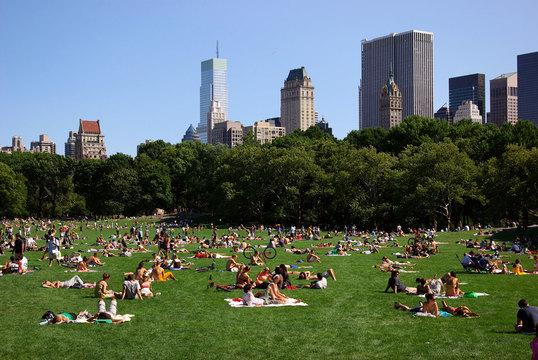 世界でもっとも緑が多い都市ベスト12
