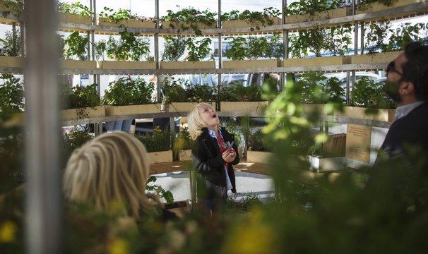 イケアの「組立式室内菜園用プランター・スタンド」、オープンソースで公開