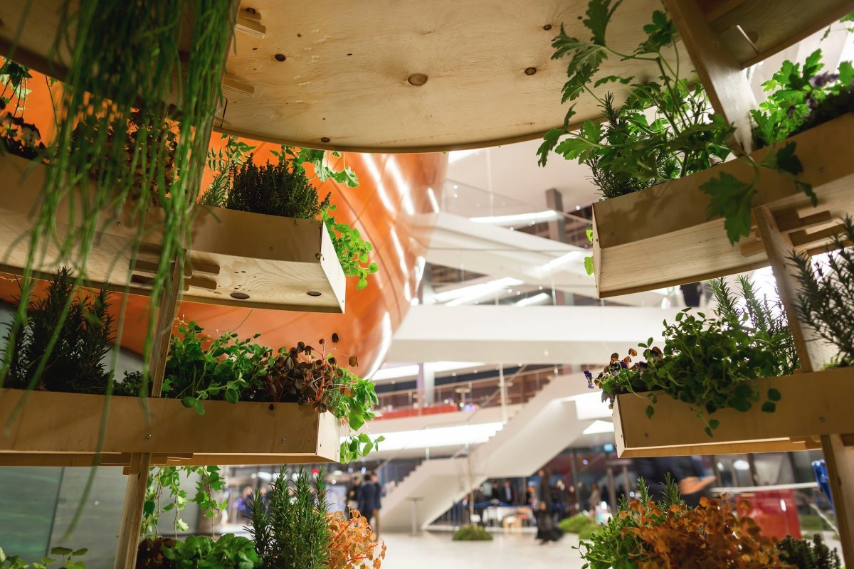 though-the-growroom-pictured-below-features-mostly-plants-the-structure-can-grow-anything-including-fruit-herbs-and-vegetables
