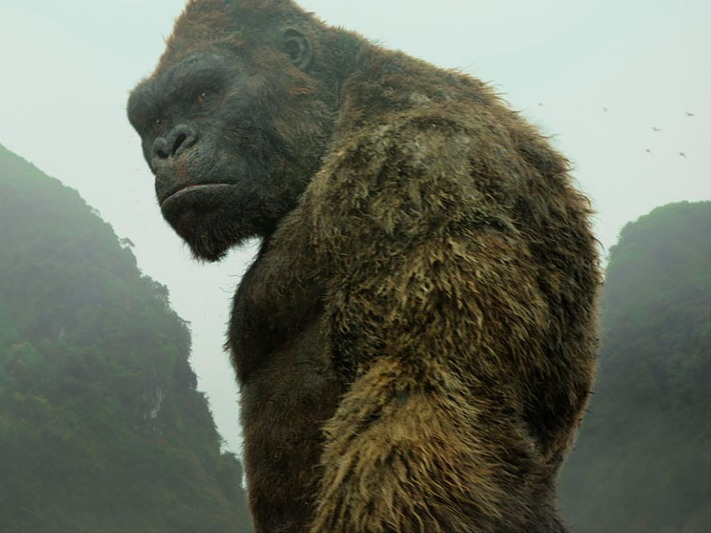 kong-skull-island-earns-61-million-to-win-the-weekend-box-office-but-is-far-from-breaking-even-1