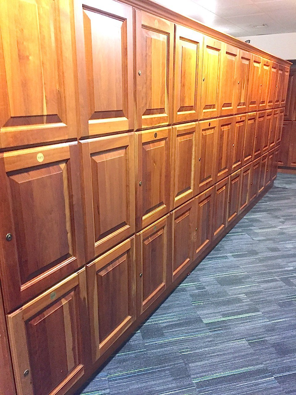 -and-an-executive-looking-locker-room-with-wood-panelling