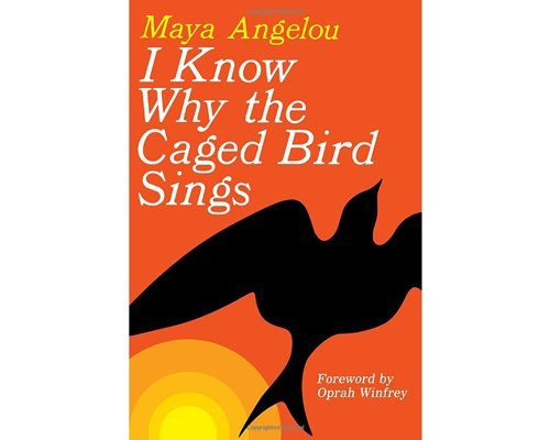 書籍『歌え、翔べない鳥たちよ』