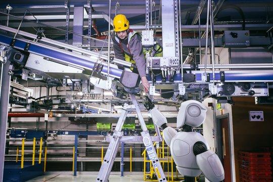 オンラインスーパーOcadoを支える「世界一先進的」なロボット倉庫