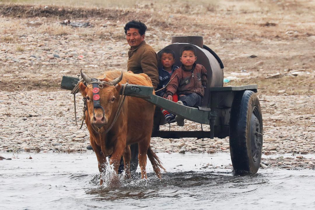 牛車で水の中を進む男性と少年たち。