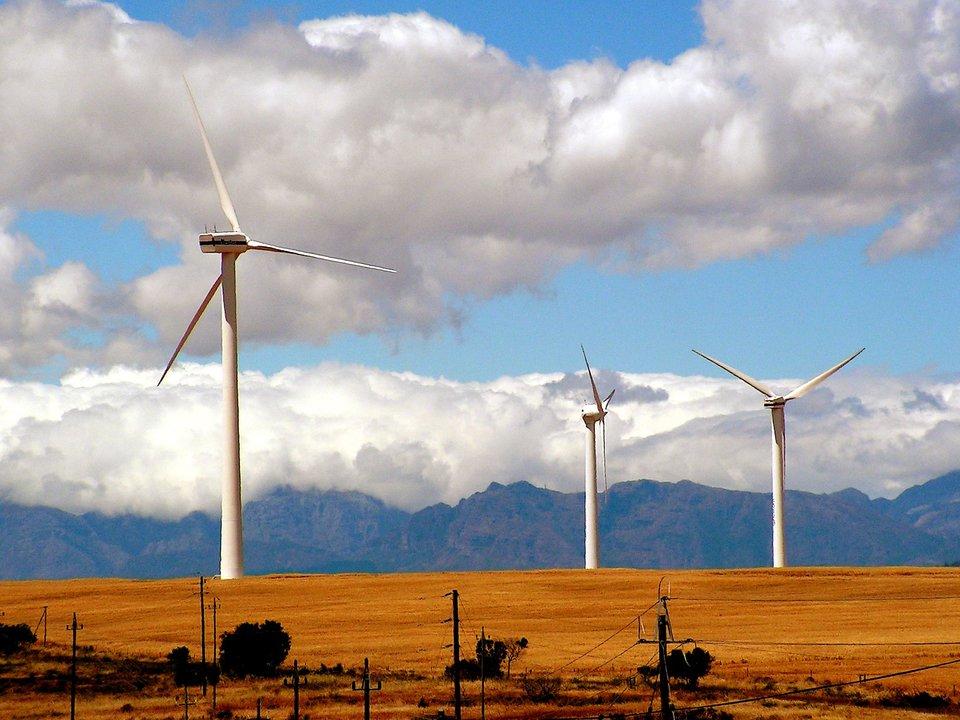 小高い丘に立ち並ぶ風力発電機