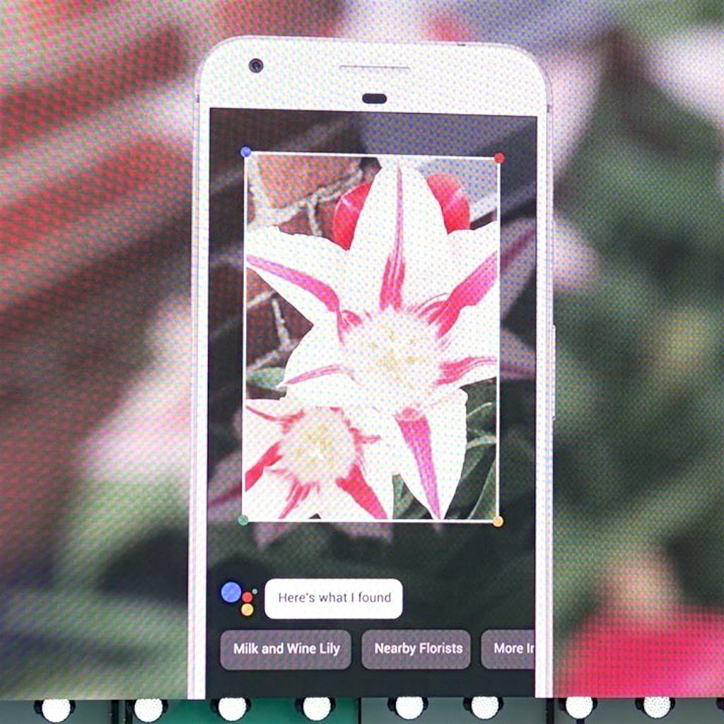 Googleの画像認識