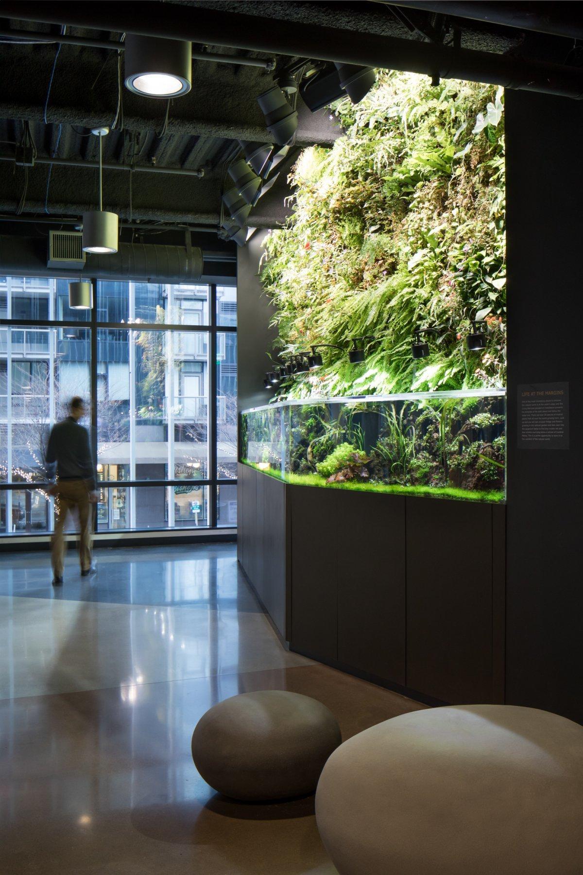 Day 1内部に設けられたグーリンスペース。壁には植物が植えられ、水槽には水草も生えている