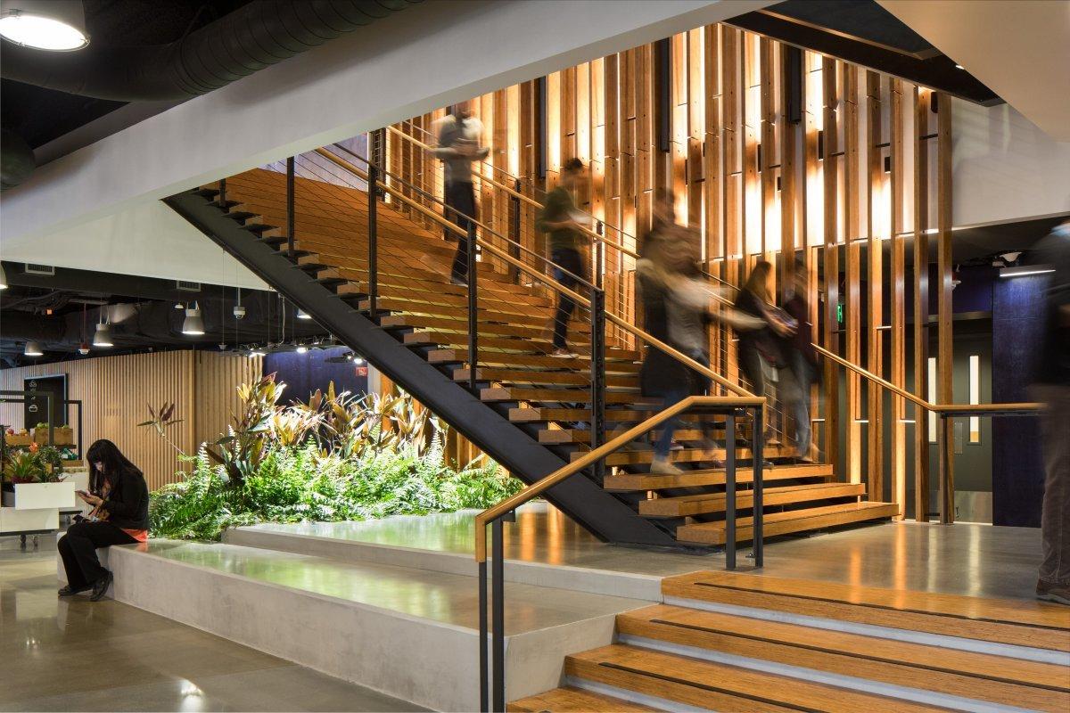 光の加減でアマゾンカラーに見える階段。ささら桁は黒、踏み板は自然なオレンジに輝く。