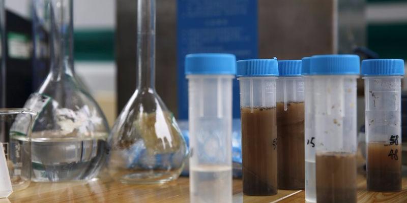 土壌汚染を調査している。
