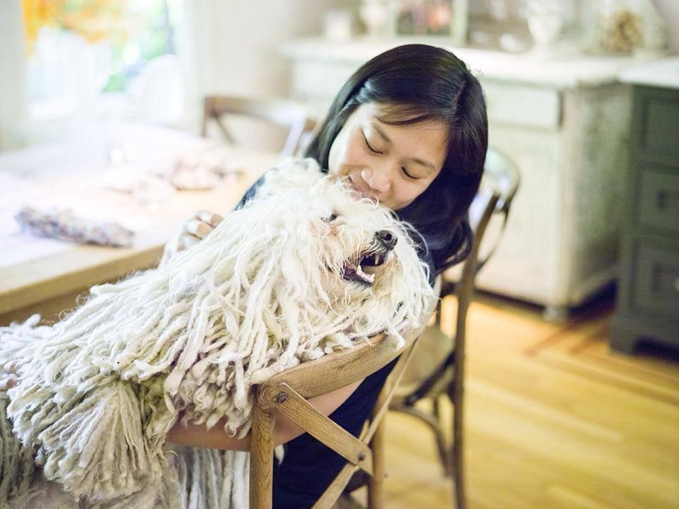プリシラ・チャンと愛犬のビースト