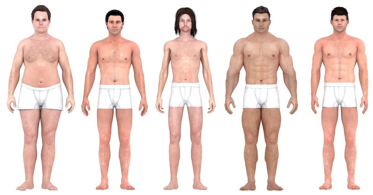 「理想」の体型の3Dモデルを並べた様子、正面から