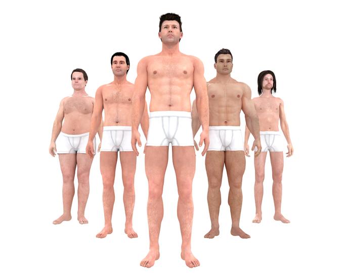 「理想」の体型の3Dモデルを並べた様子