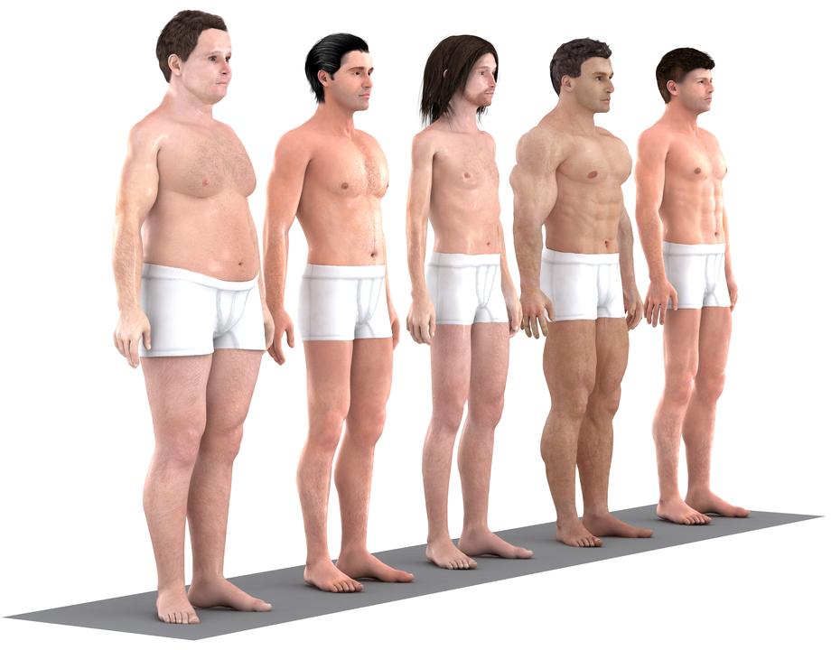 「理想的な」体型の3Dモデルを並べた様子、左斜め前方から