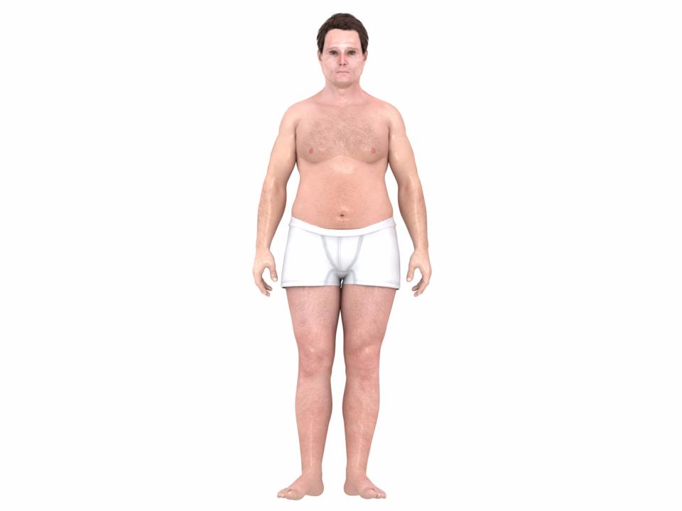 1870年代におけるアメリカ人男性の「理想」の体型(3Dモデル)