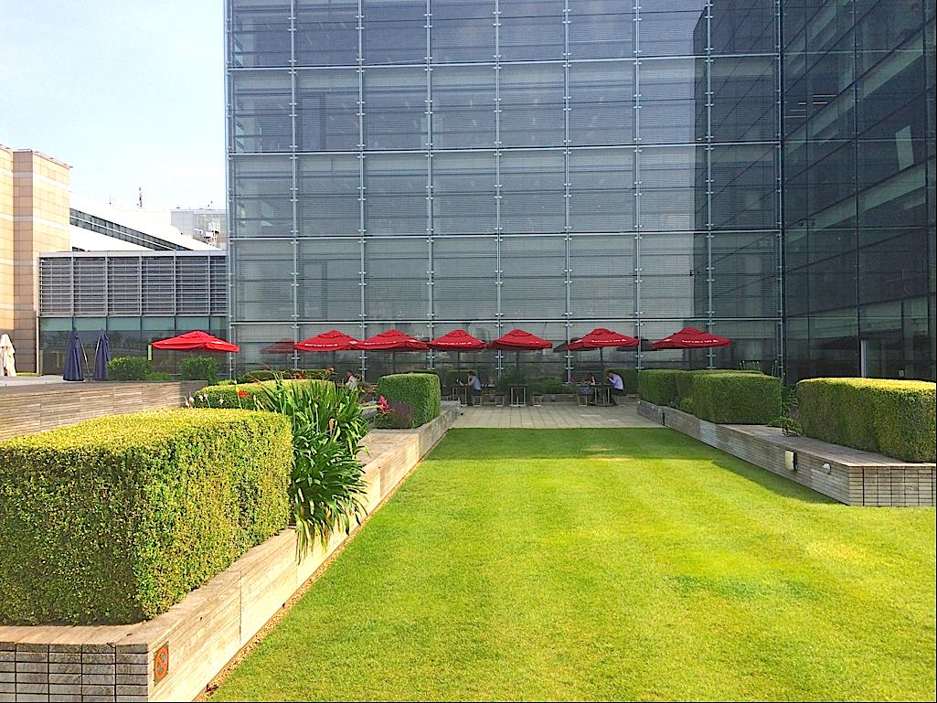 6階社員食堂「ザ・テラス」の様子。立ち並ぶ赤いパラソルが、芝生と生け垣に映える