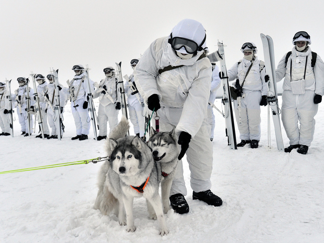 ロシア兵とハスキー犬