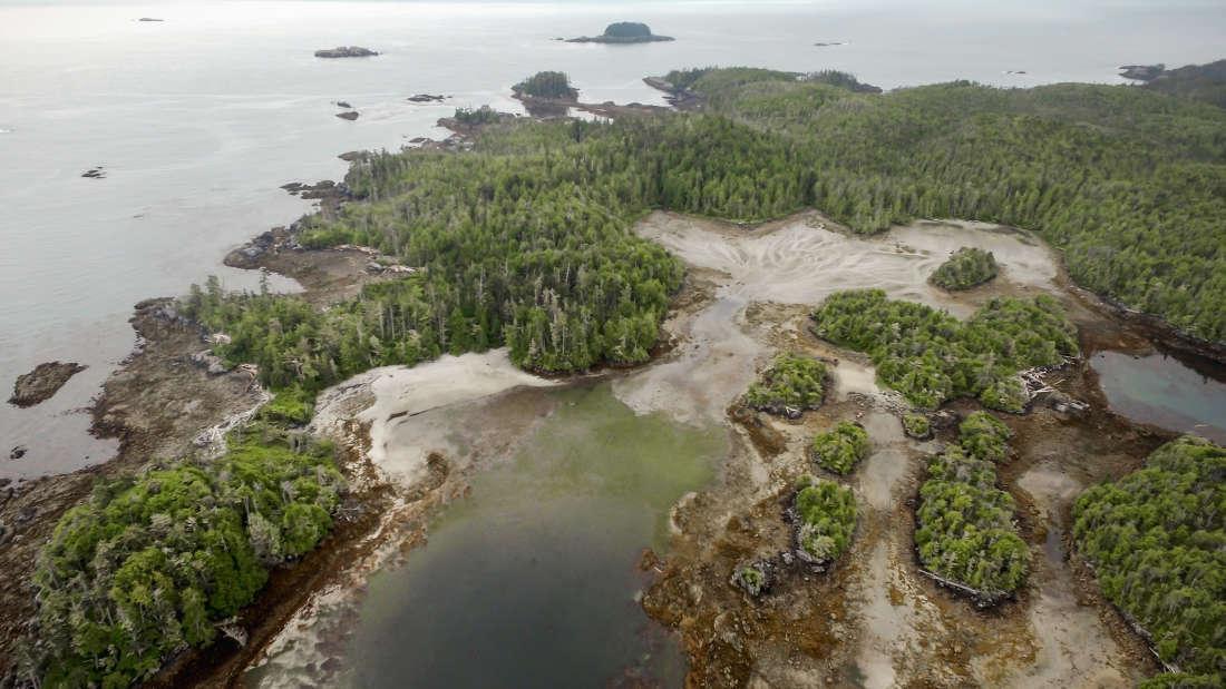 トリケット島