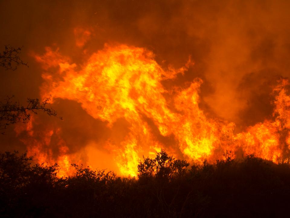 ナパの山火事