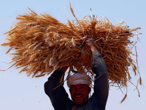エジプトの農民