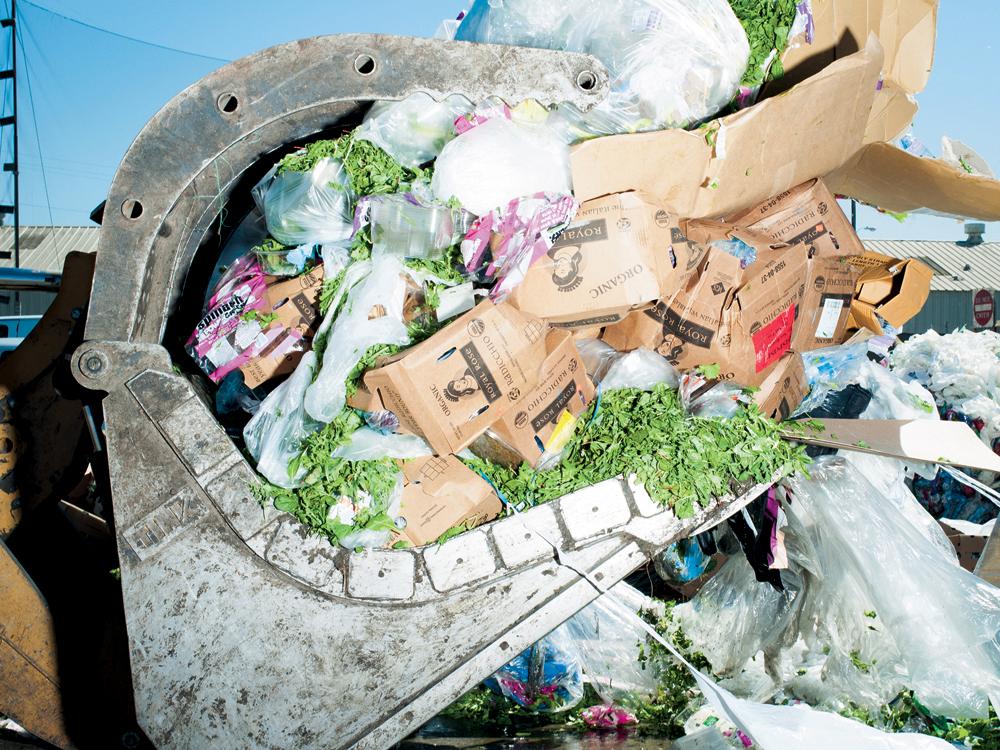 廃棄される食品