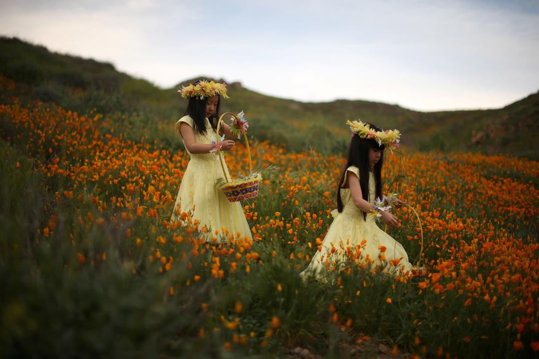 花を摘む少女