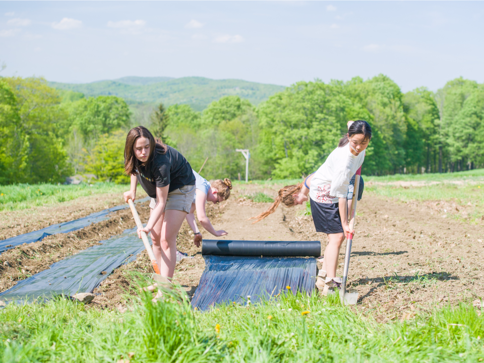 農作業をする生徒