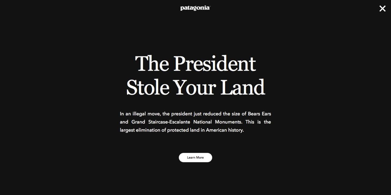 パタゴニアのホームページ