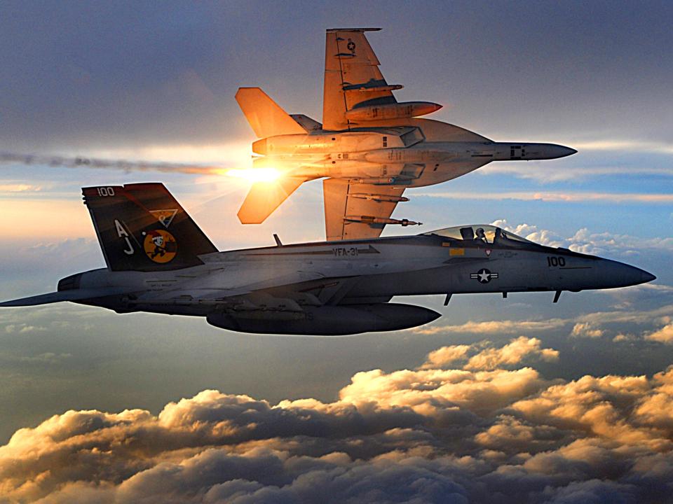 米海軍のF-18も参加