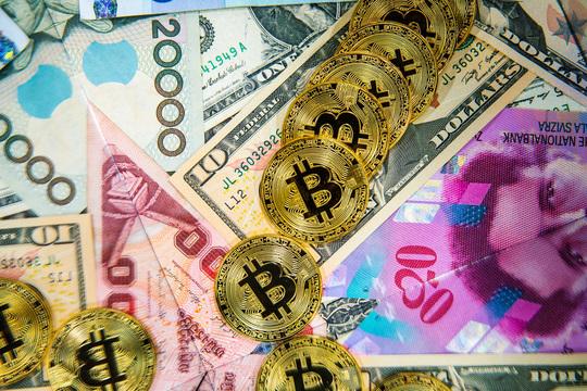 ビットコインに続け! 急騰アルトコインに熱狂する「ガチホ」投資家たち