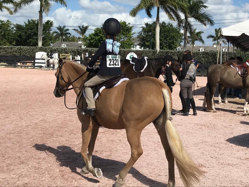 6歳の子どもたちは「ポニー・アイランド」と呼ばれる2つの馬場で小さい馬に乗って戦う。