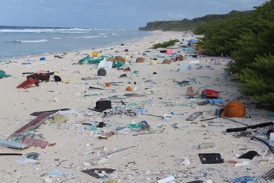 ゴミで埋め尽くされた白浜
