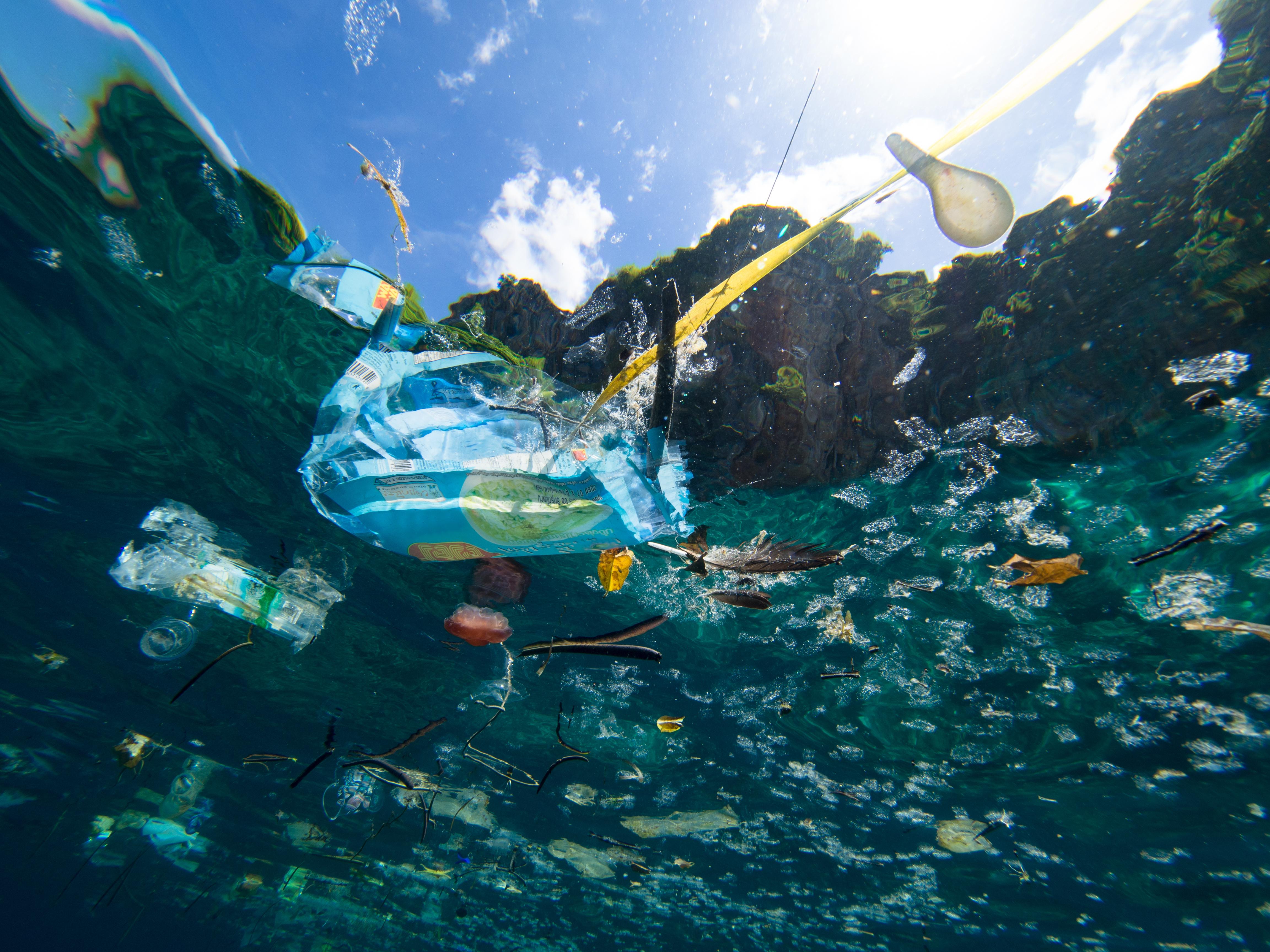 海洋 プラスチック 問題