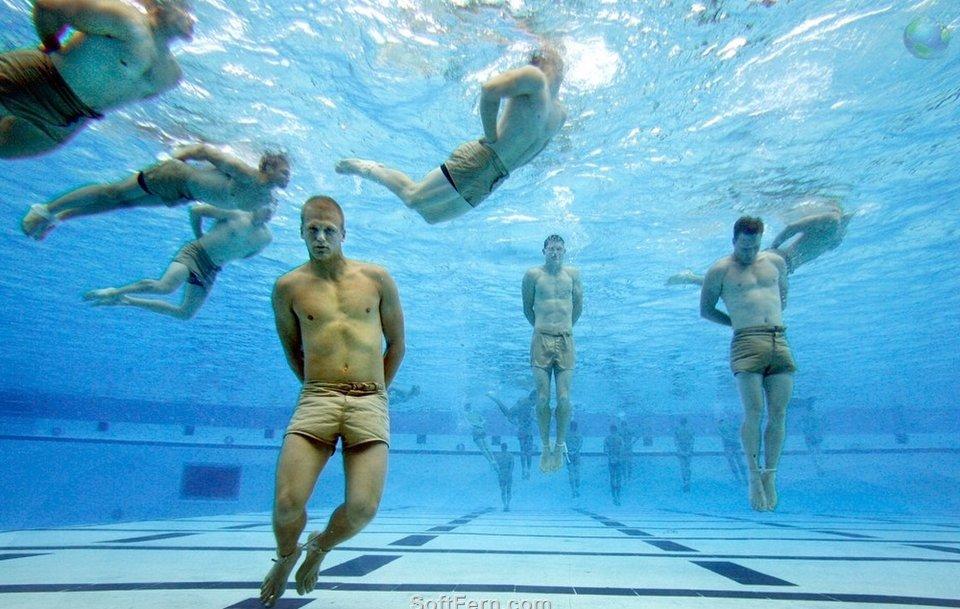 疲れることなく、泳ぎ続けられる...