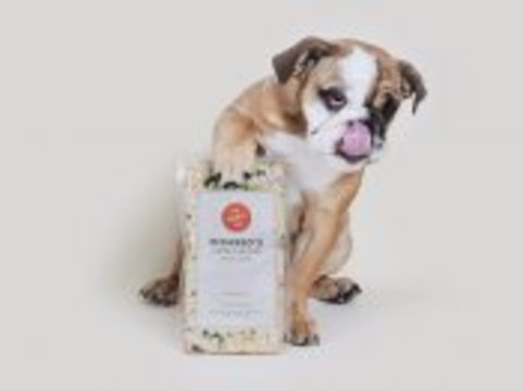 a-dog-food-startup-that-says-it-makes-meals-good-enough-for-humans-just-raised-39-million.png