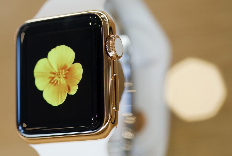 1位 Apple Watch Edition(2015年)、1万7000ドル