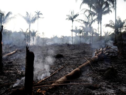 アマゾンの熱帯雨林が記録的な速さで燃えている。2018年には約4万回の火災が発生したが、2019年はすでに7万4000回以上発生している。
