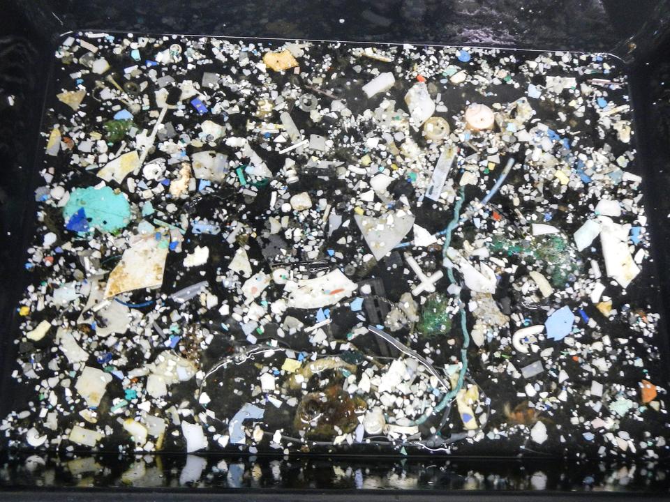 多くのプラスチックが海洋に投棄されている。
