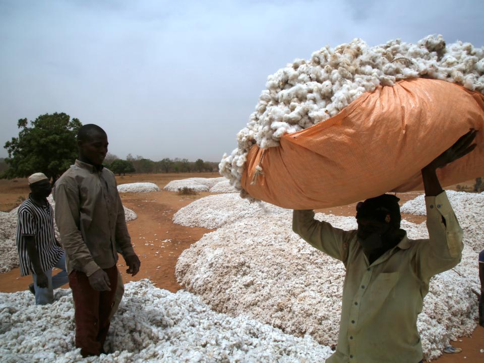 ブルキナファソ、ボボ・ディウラッソ近郊の木綿マーケット。2017年3月。
