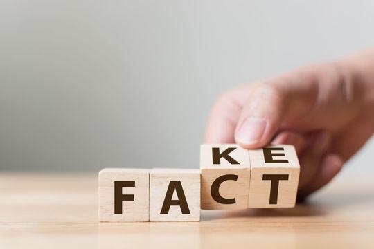 factともfakeとも取れる積み木