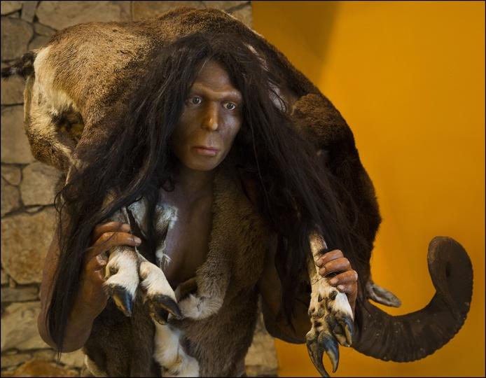 古代人類ホモ・エレクトスは約11万年前までいた…他の人類と交配の可能 ...