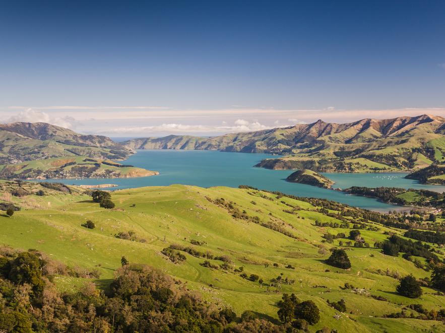 14位 ニュージーランド