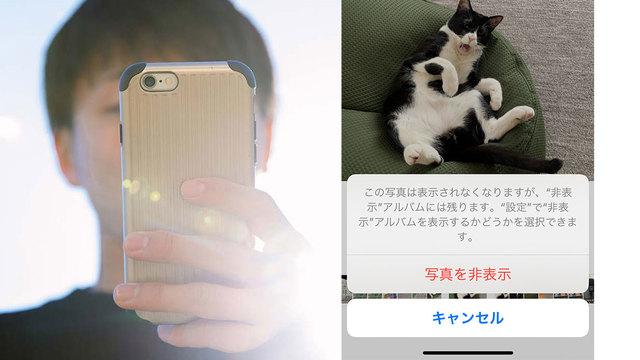 iPhoneを見る男性と猫