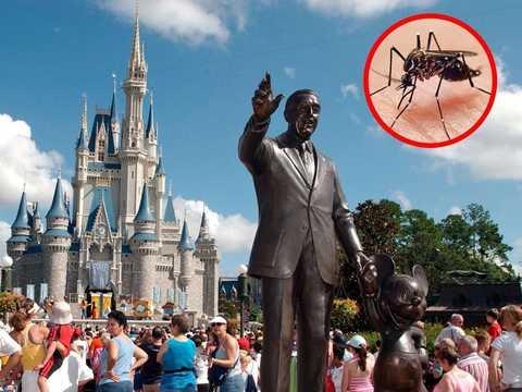 フロリダのディズニー・ワールド