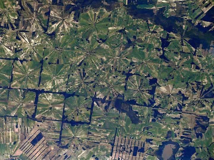 宇宙飛行士のトマ・ペスケは、この画像をキャプション付きでTwitterに投稿した。「ボリビアのサン・ペドロ・リモン。この画像に見られる放射状のパターンは、この地域で良く見られる森林伐採方法で、農地をつくりだすために熱帯乾燥林を伐採している」