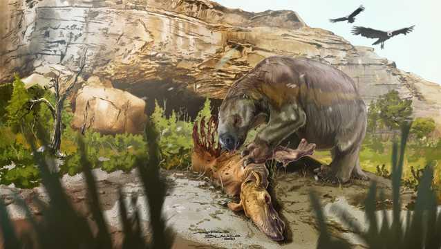 南アメリカにいた古代の巨大ナマケモノが、現代のリャマの祖先にあたる草食動物の死骸を食べている様子の想像図。