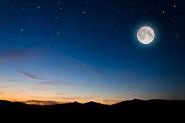 9月19日は中秋の名月! うさぎや月を味わう厳選スイーツ&日本酒3選