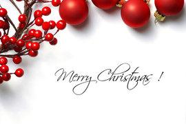 クリスマスには、あえての和風スイーツが粋!